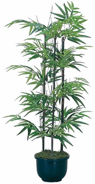 観葉植物 インテリアグリーン フェイク 人工観葉植物 光触媒 黒竹 1.0  《アートグリーン》