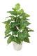 観葉植物 インテリアグリーン フェイク 人工観葉植物 光触媒 フレッシュポトスM  《アートグリーン》
