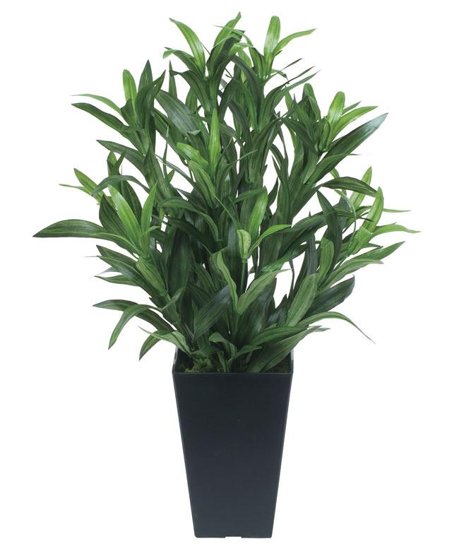 観葉植物 インテリアグリーン フェイク 人工観葉植物 光触媒 スパイダ−  《アートグリーン》
