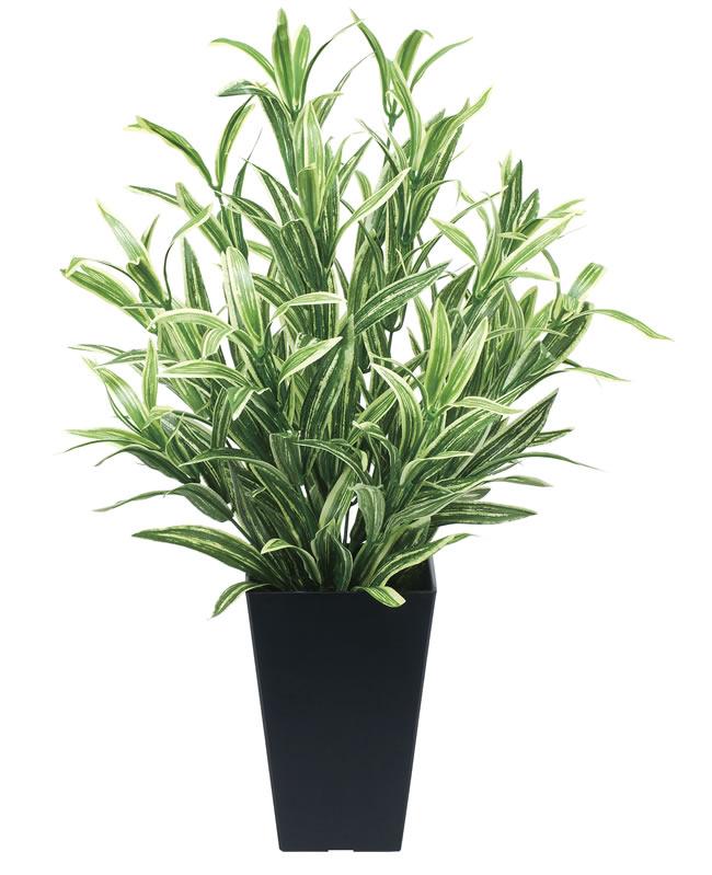 観葉植物 インテリアグリーン フェイク 人工観葉植物 光触媒 ツ−トンスパイダ−  《アートグリーン》