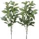 観葉植物 インテリアグリーン フェイク 人工観葉植物  光触媒 シキミ2本セット 《アートグリーン》