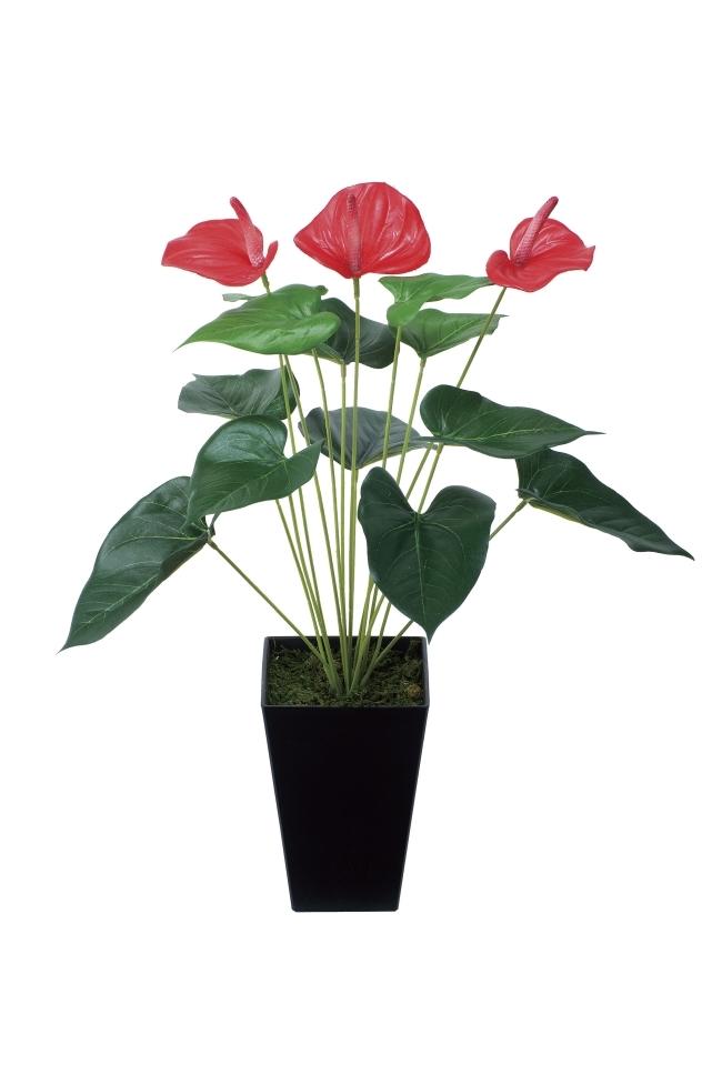 観葉植物 インテリアグリーン フェイク 人工観葉植物 光触媒 アンスリュ−ム  《アートグリーン》