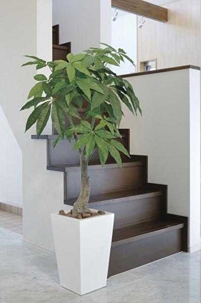 観葉植物 インテリアグリーン フェイク 人工観葉植物 光触媒 ロイヤルパキラ  1.35  《アートグリーン》