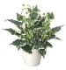 観葉植物 インテリアグリーン フェイク 人工観葉植物 光触媒 ホ−ランドアイビ−L  《アートグリーン》