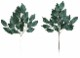 観葉植物 インテリアグリーン フェイク 人工観葉植物  光触媒 榊小4本セット 《アートグリーン》