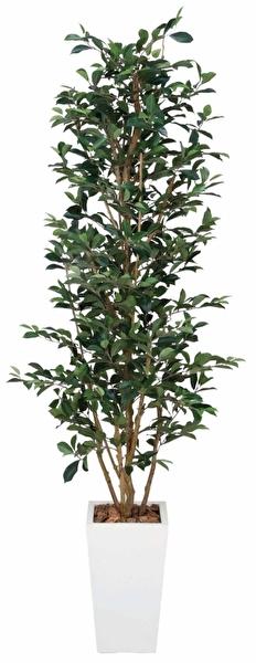 観葉植物 インテリアグリーン フェイク 人工観葉植物 光触媒 ガジュマルタワ− 1.8  《アートグリーン》