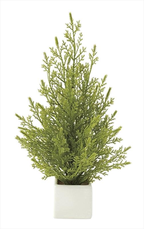 観葉植物 インテリアグリーン フェイク 人工観葉植物 光触媒 ミニゴ−ルドクレスト  《アートグリーン》