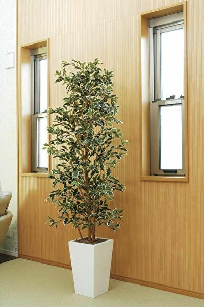 観葉植物 インテリアグリーン フェイク 人工観葉植物 光触媒 ガジュマルタワ−G/W 1.8  《アートグリーン》