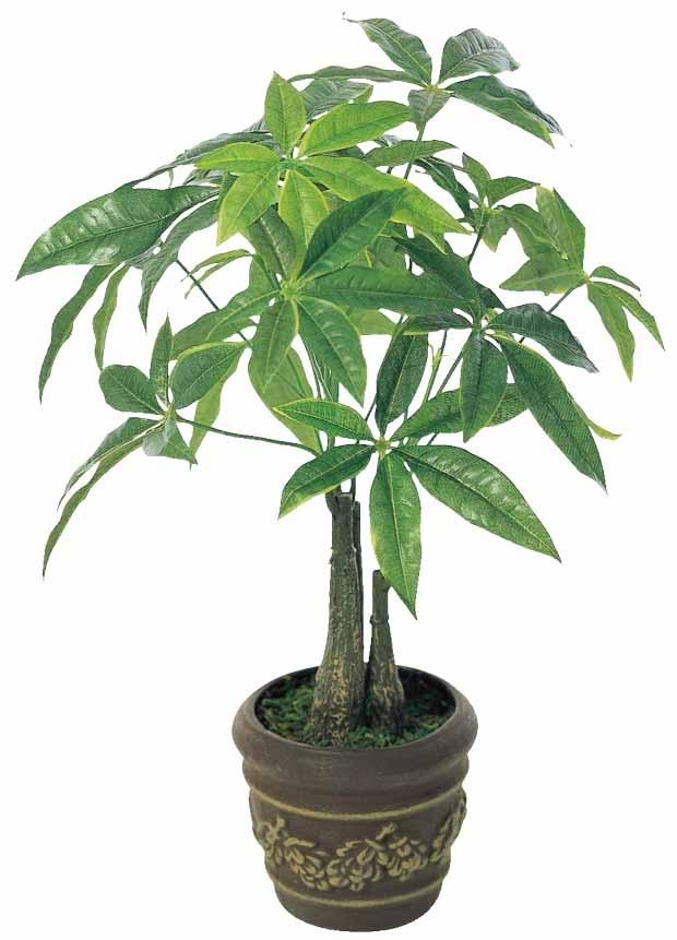 観葉植物 インテリアグリーン フェイク 人工観葉植物 光触媒 パキラポットM  《アートグリーン》
