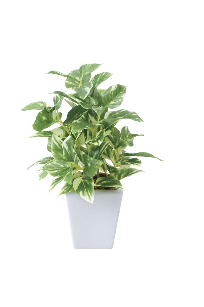 観葉植物 インテリアグリーン フェイク 人工観葉植物 光触媒 ポトスポット  《アートグリーン》