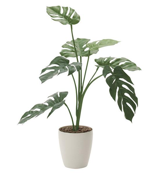 観葉植物 インテリアグリーン フェイク 人工観葉植物 光触媒 モンステラ75  《アートグリーン》