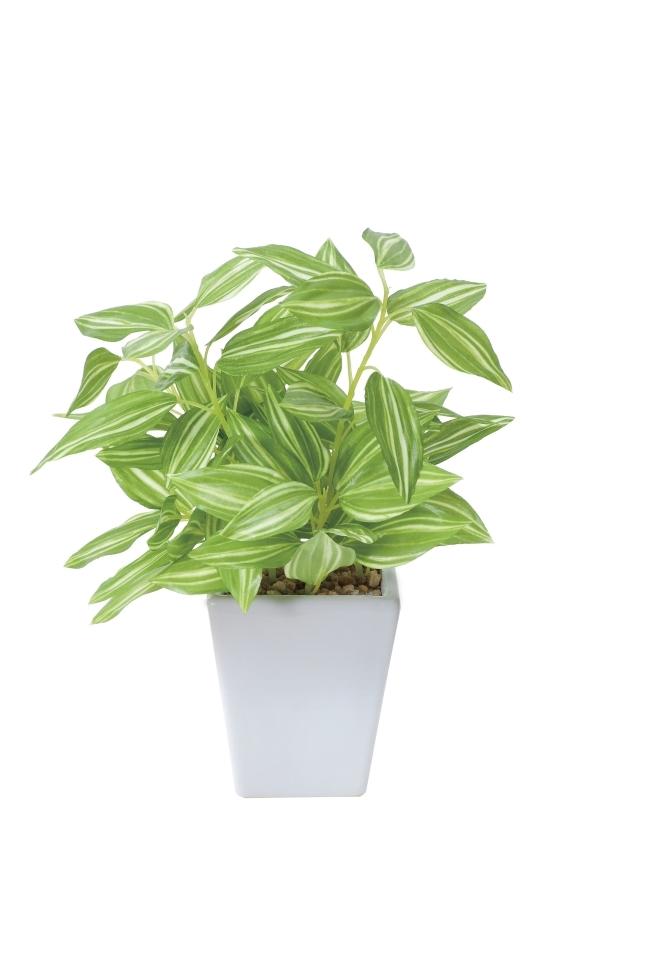観葉植物 インテリアグリーン フェイク 人工観葉植物 光触媒 トラディスカンティアポット  《アートグリーン》