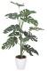 観葉植物 インテリアグリーン フェイク 人工観葉植物 光触媒 モンステラ 1.2  《アートグリーン》