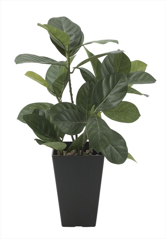 観葉植物 インテリアグリーン フェイク 人工観葉植物 光触媒 パンの木  《アートグリーン》
