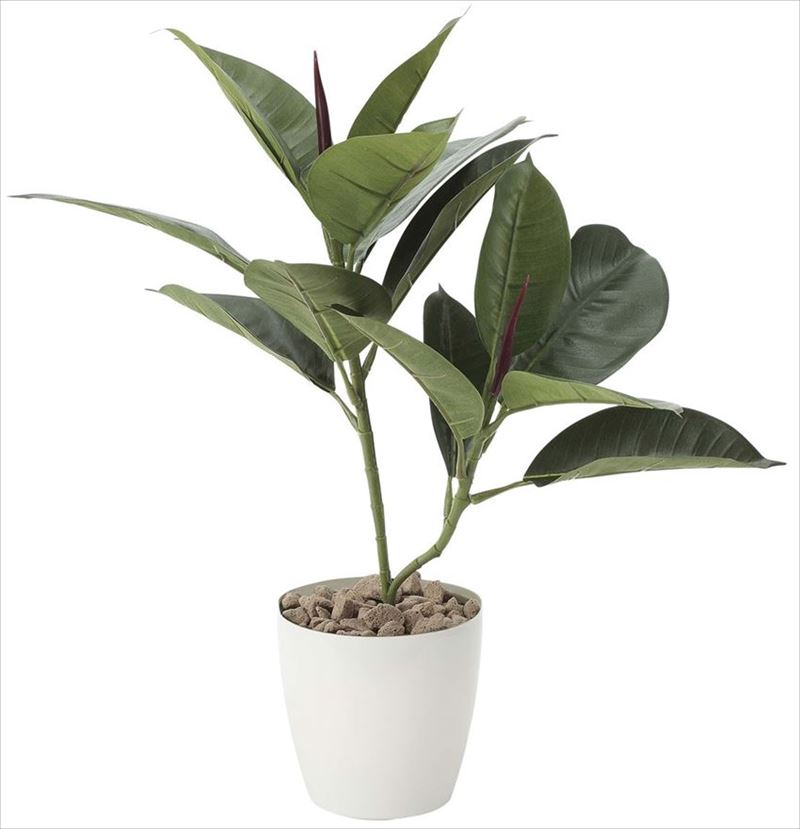 観葉植物 インテリアグリーン フェイク 人工観葉植物 光触媒 ゴムの木  《アートグリーン》
