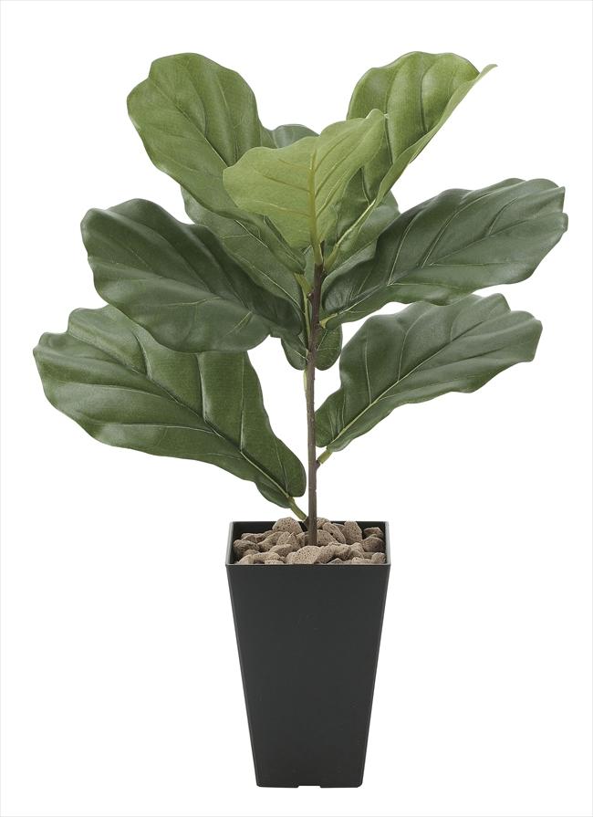観葉植物 インテリアグリーン フェイク 人工観葉植物 光触媒 カシワバゴム  《アートグリーン》