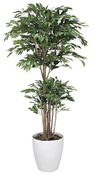 観葉植物 インテリアグリーン フェイク 人工観葉植物 光触媒 トロピカルベンジャミン 1.6  《アートグリーン》