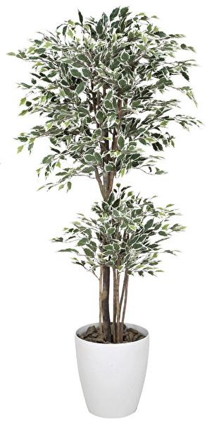 観葉植物 インテリアグリーン フェイク 人工観葉植物 光触媒 トロピカルベンジャミン斑入り 1.6  《アートグリーン》