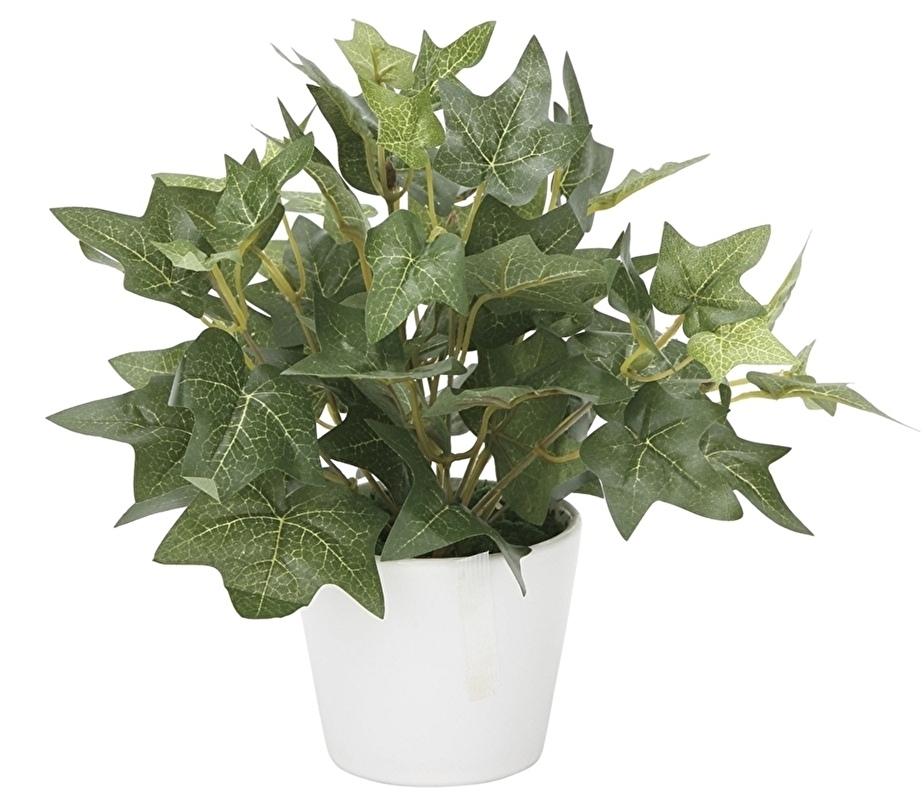 観葉植物 インテリアグリーン フェイク 人工観葉植物 光触媒 アイビ—  《アートグリーン》