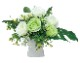 観葉植物 インテリアグリーン フェイク 人工観葉植物 光触媒 グリ−ンソフト  《アートグリーン》