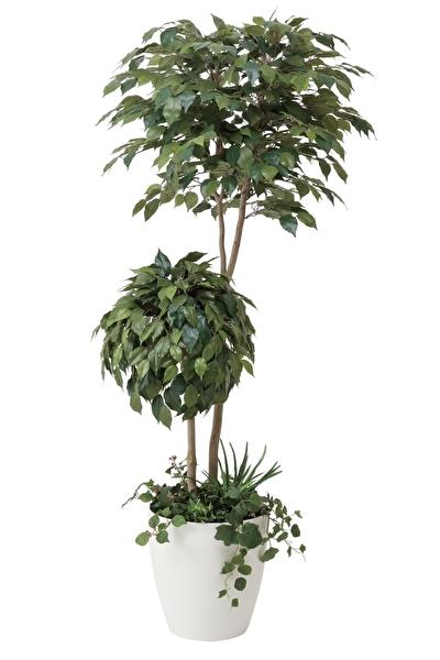 観葉植物 インテリアグリーン フェイク 人工観葉植物 光触媒 ベンジャミンダブルフェイス植栽付1.8  《アートグリーン》