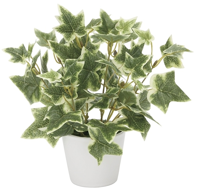 観葉植物 インテリアグリーン フェイク 人工観葉植物 光触媒 斑入りアイビ—  《アートグリーン》