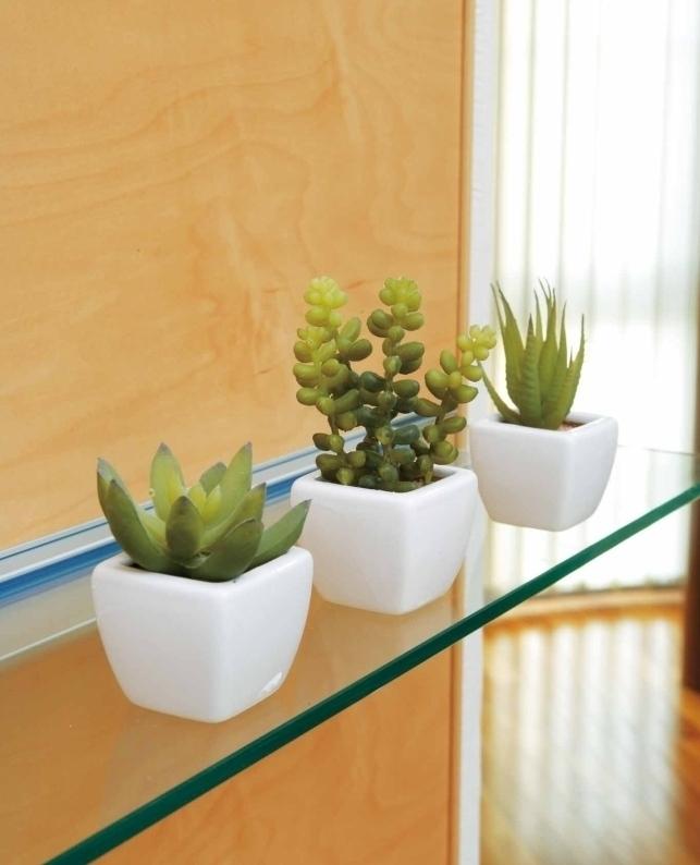 観葉植物 インテリアグリーン フェイク 人工観葉植物 光触媒 多肉植物3点セット  《アートグリーン》