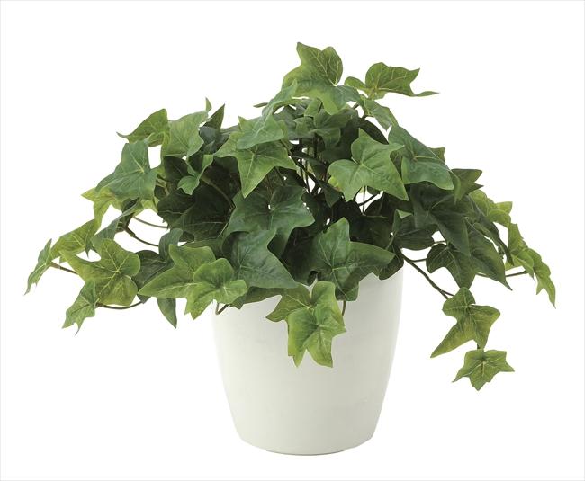観葉植物 インテリアグリーン フェイク 人工観葉植物 光触媒 フレッシュアイビ−  《アートグリーン》