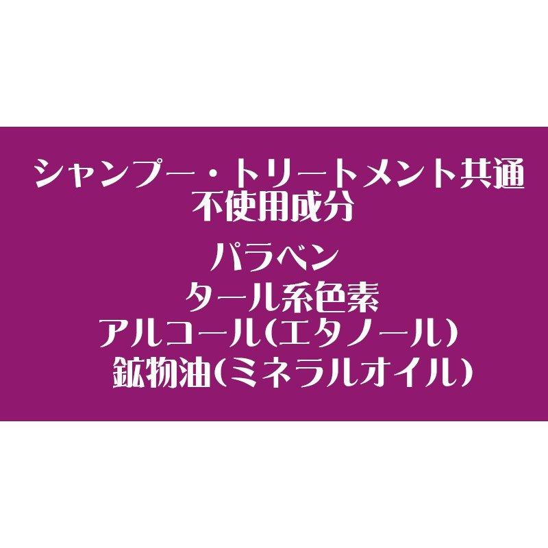 サイムダン SAIMDANG シャンプー サイムダンプレミアム リファイン HASUOステム シャンプー  SAIMDANG premium サイムダン化粧品