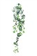 観葉植物 インテリアグリーン フェイク 人工観葉植物 光触媒 壁掛シュガ−バイン  《アートグリーン》