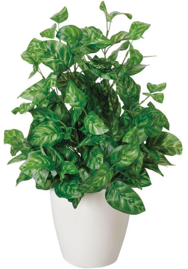 観葉植物 インテリアグリーン フェイク 人工観葉植物 光触媒 ピ−コックS  《アートグリーン》
