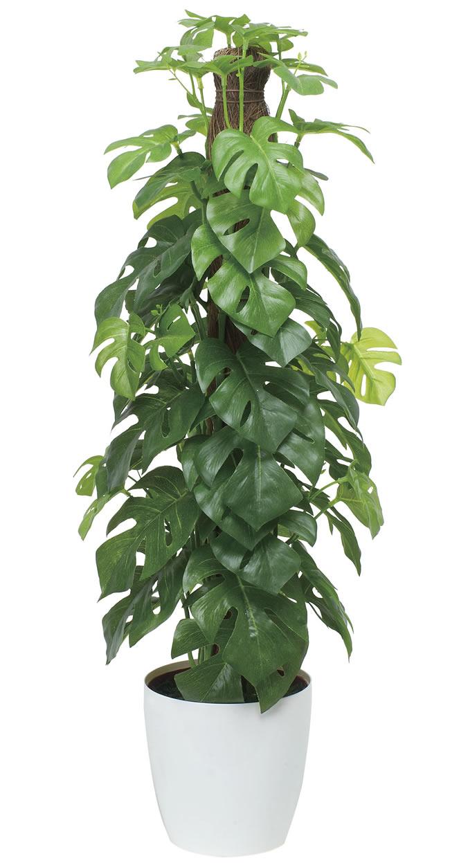 観葉植物 インテリアグリーン フェイク 人工観葉植物 光触媒 フレッシュポ−ルスプリットM  《アートグリーン》