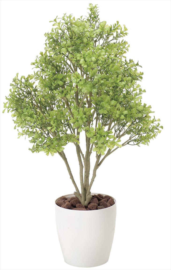 観葉植物 インテリアグリーン フェイク 人工観葉植物 光触媒 ボックスウッド  《アートグリーン》