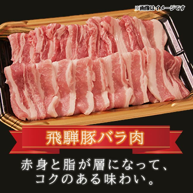 豚肉 焼肉セット しゃぶしゃぶ セット 国産 飛騨豚 合計 700g ( ロース 300g バラ 400g ) 4〜5人前  【ギフト箱入】 送料無料 同梱不可
