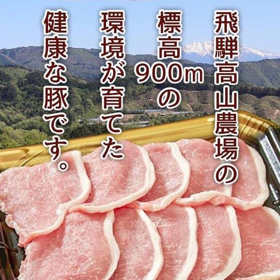 豚肉 焼肉 しゃぶしゃぶ とんかつ 国産 飛騨豚 ロース 1kg 6人前〜7人前