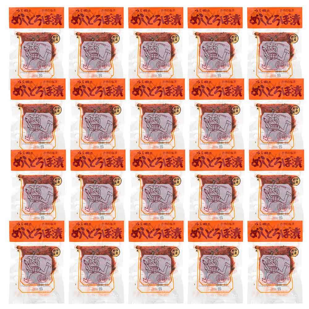 【 20 】 うら田 めしどろぼ漬 飯泥棒 めしどろぼう 120g × 20袋 漬物 岐阜 飛騨 高山 特産品