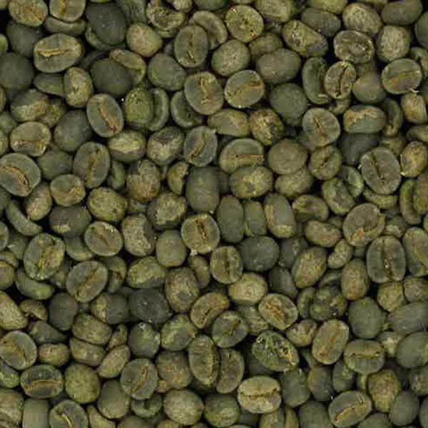 ブラジル  ファゼンダプログレッソ  生豆 460g