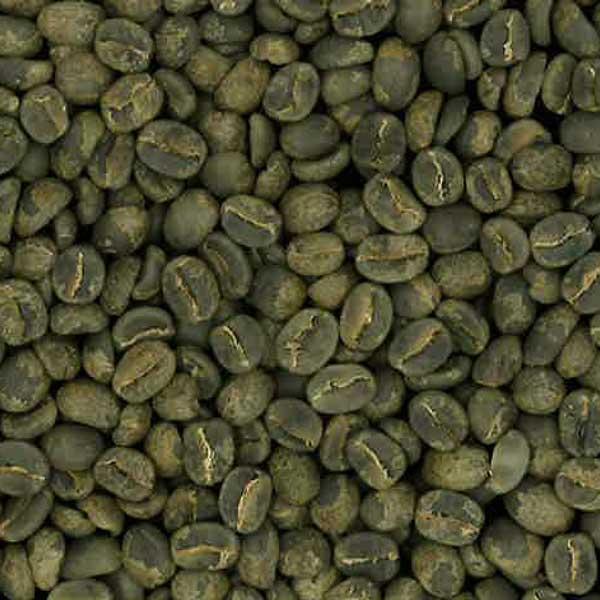 グアテマラ サンセバスチャン  生豆 230g
