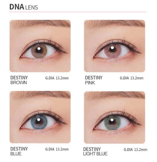 DNA 1month (1箱2枚) ディスティニーブラウン