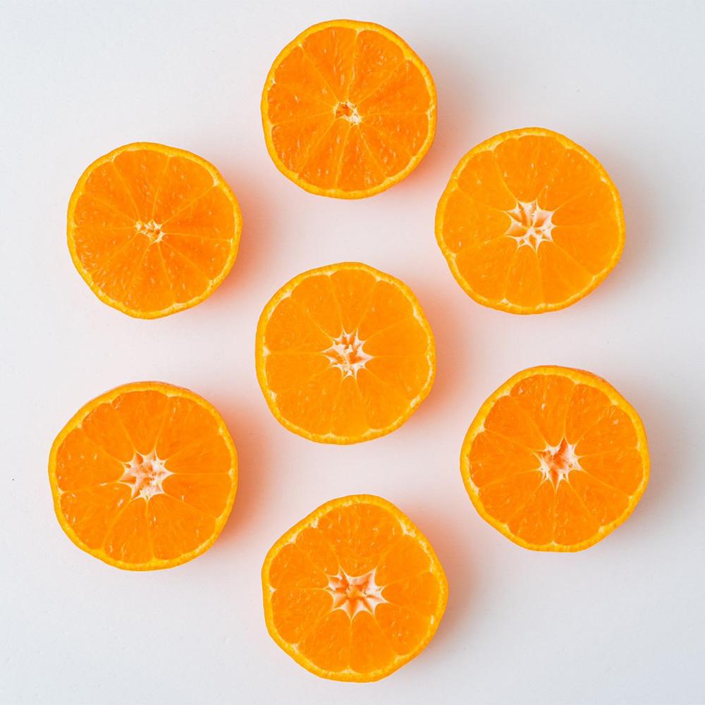 【家庭用】 宇和島みかん 10kg | 愛媛県宇和島産
