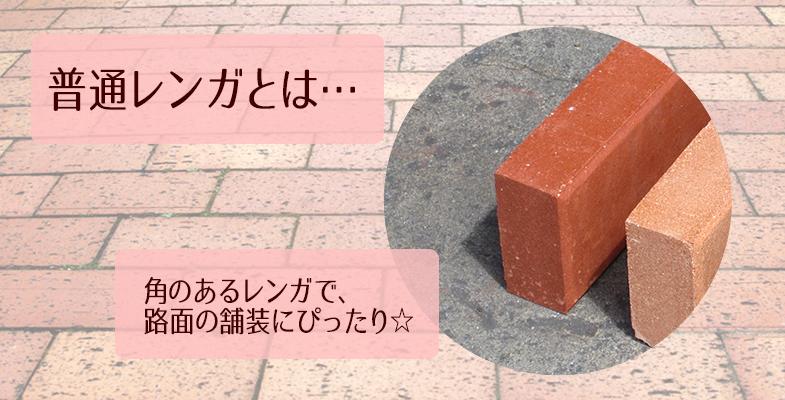 普通レンガ キャロットオレンジ 50個セット(1平米分)