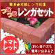 レンガ花壇つむつむレンガセット トマトレッド(笠石12個+本体24個)