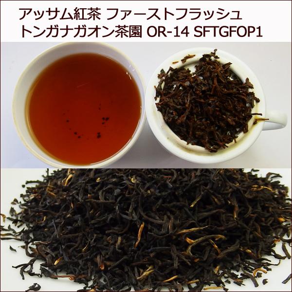 アッサム紅茶 2017年 ファーストフラッシュ トンガナガオン茶園 200g (50g x 4袋) OR-14 SFTGFOP1