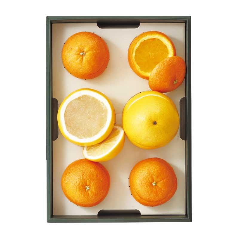 スペシャルジェリー詰合(オレンジ4個、グレープフルーツ2個) [冷蔵便]