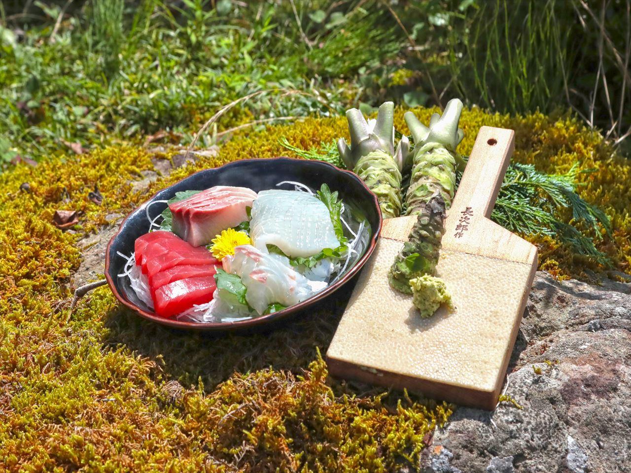 伊豆わさび食品の池セット