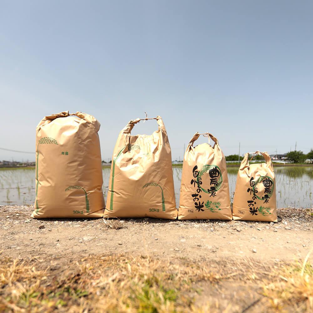 【2021年9月新米】低農薬 じぃじのコシヒカリ 20kg