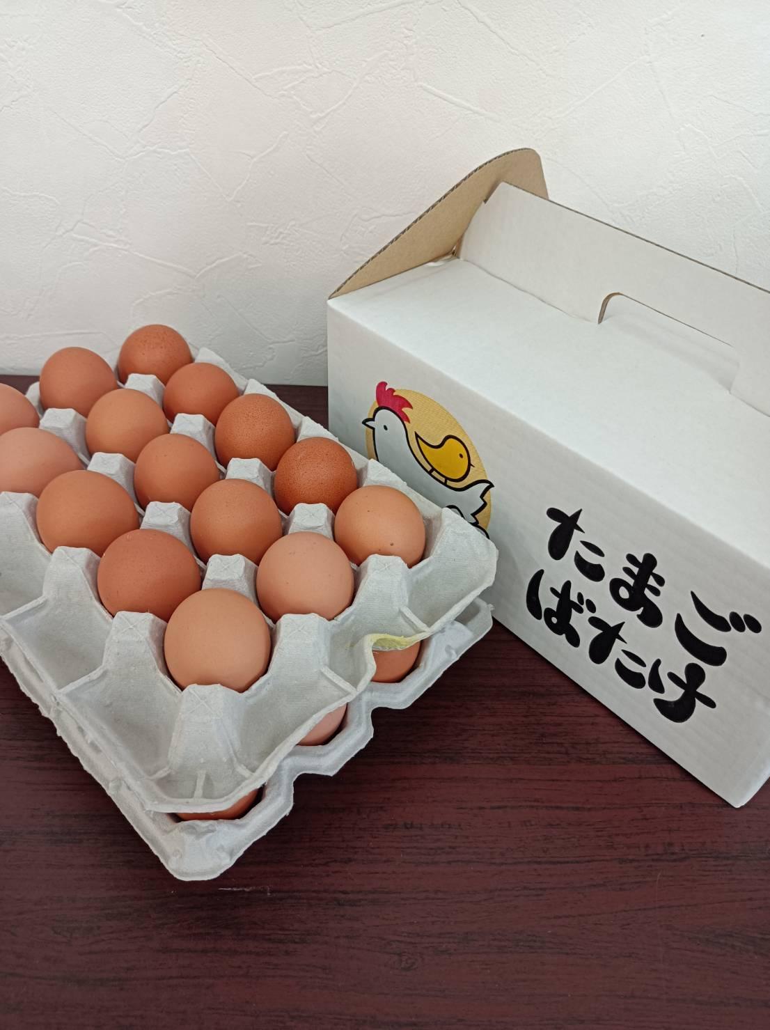 たまごばたけの濃い〜卵 Mサイズ 30個入り