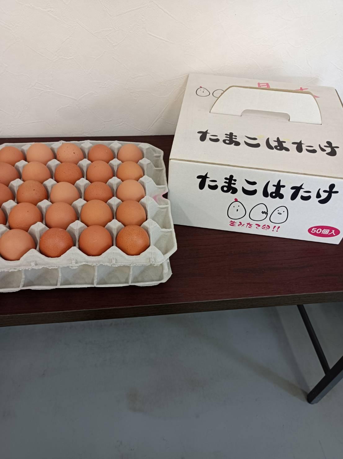 たまごばたけ 希少な平飼い卵 50個入り