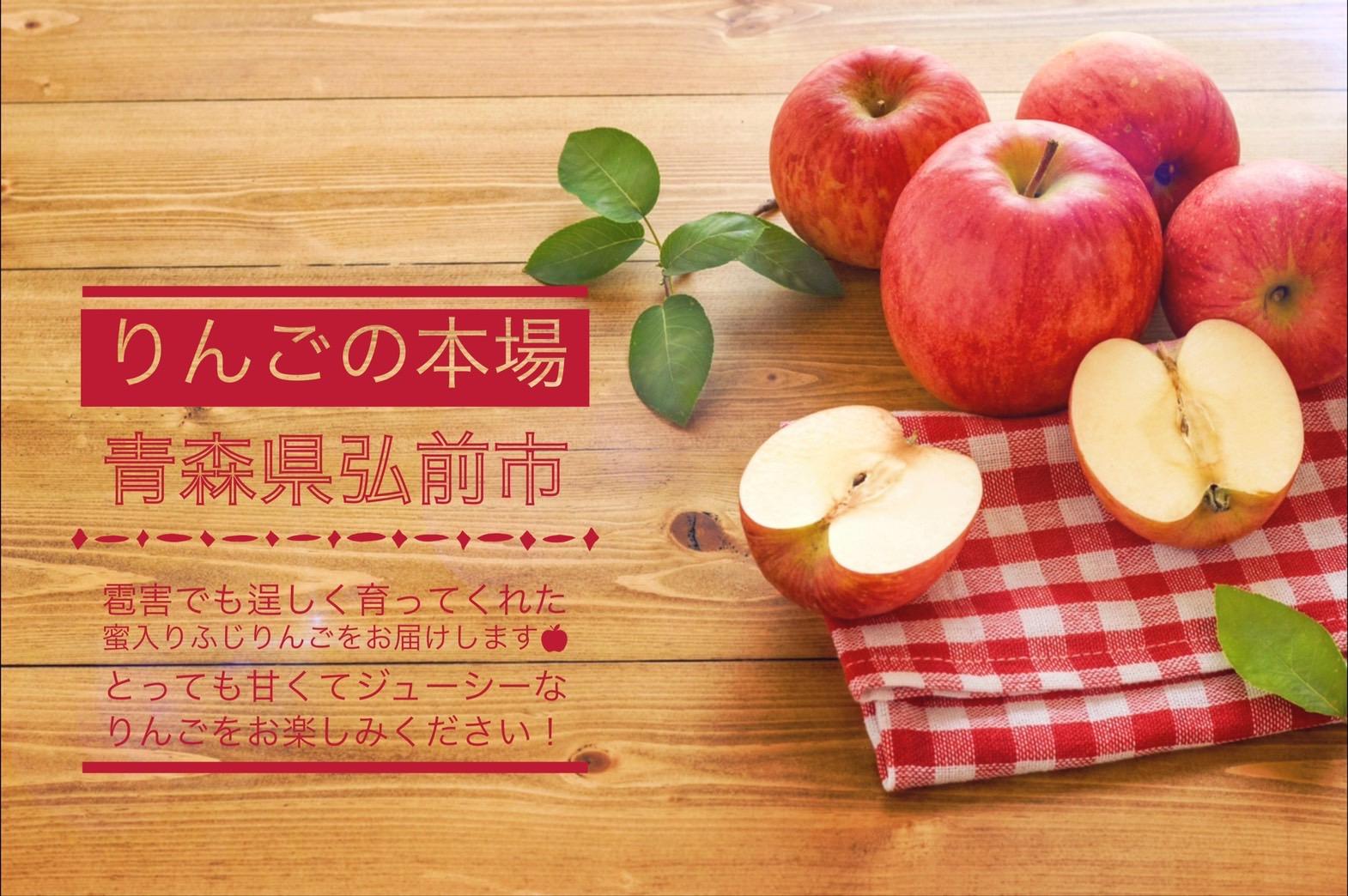 【予約販売:応援価格】果樹園ポムの木 幸せの赤い蜜入りふじりんご🍎5kg(16~20個)