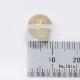【早い者勝ち】アマビエ彫刻ビーズ10.0mm クリスタル ゴールド 1個 OT-A-WQG